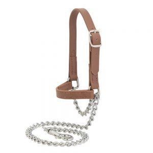 Halters/Show Chains